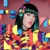 『ケイティ・ペリー』This Is How We Do のミュージックビデオで『HOUSE OF HOLLAND』のファージャケットを着用